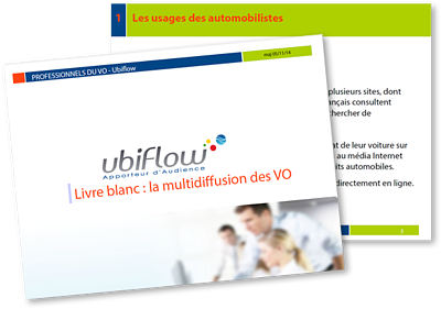 Visuel-LB-la-multidiffusion-des-VO-1