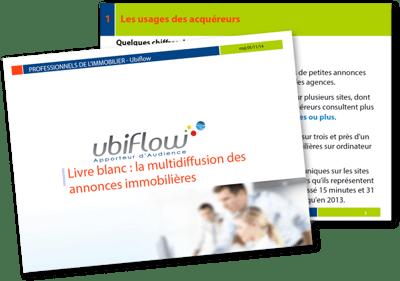 Visuel-LB-multidiffusion-annonces-immobilieres